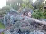 odvoz-a-rozrezani-popadanych-stromu-po-vichrici-praha