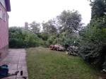 uklid-zahrady-po kaceni-stromu