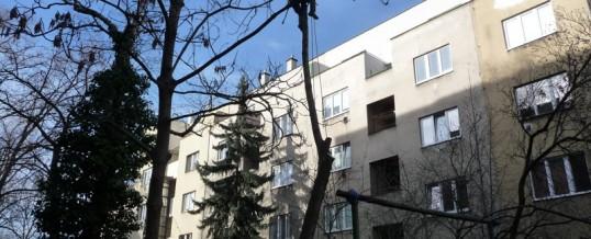 Jasan, Praha: Rizikové kácení