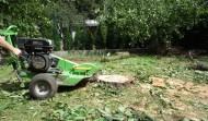 Zahrada RD, Praha: Kácení a frézování pařezů