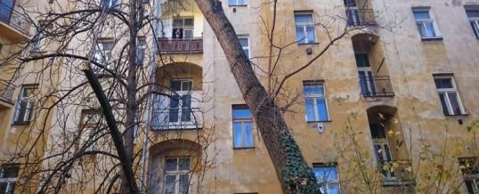 Vnitroblok BD, Praha: Rizikové kácení